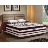 Mylatex Elegant Independent Support Wrapped Coil Mattress