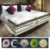 Mastercoil Spinal Alignment Gold Individual Pocket Spring Mattress