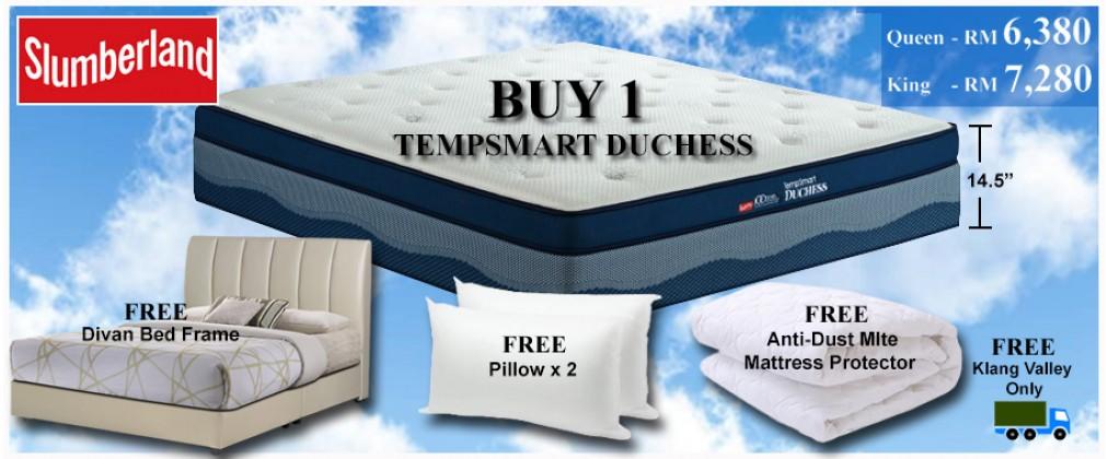 bed n mattress